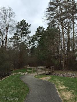 FitNewton_Trail