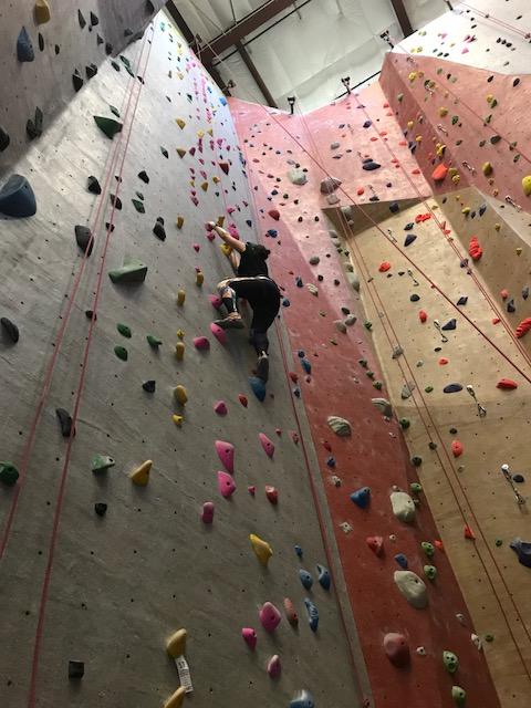 FitNewtonBlog-Climbing